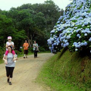 Caminhada rural: Caminho das Hortências
