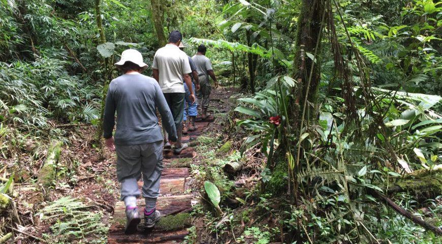 Você se comporta de forma ética em ambientes naturais?